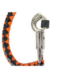 Orange and Black Motorcycle Whip